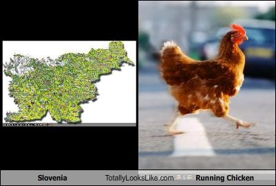 Slovenia Totally Looks Like Running Chicken