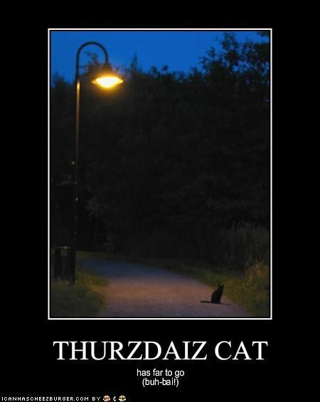THURZDAIZ CAT