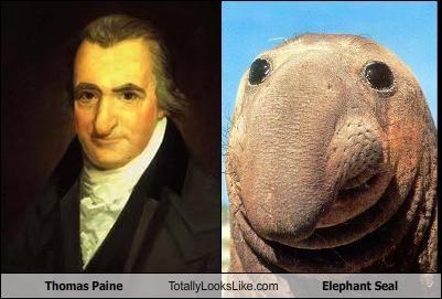 Thomas Paine Totally Looks Like Elephant Seal