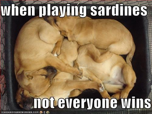 when playing sardines                not everyone wins