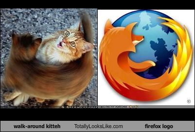 walk-around kitteh Totally Looks Like firefox logo