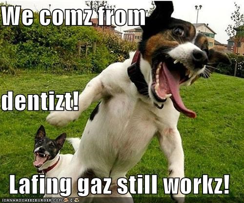 We comz from dentizt! Lafing gaz still workz!