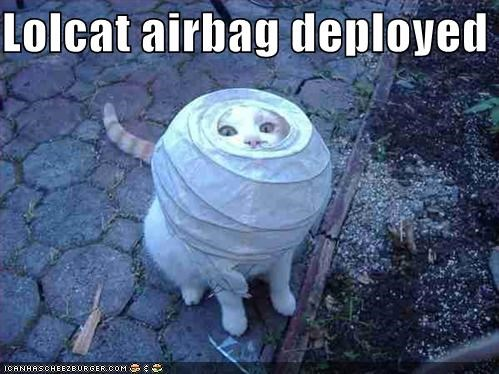 Lolcat airbag deployed