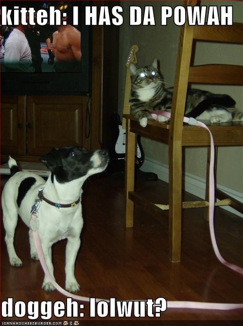 kitteh: I HAS DA POWAH  doggeh: lolwut?