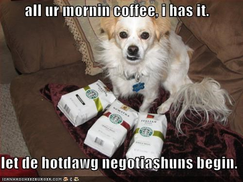 all ur mornin coffee, i has it.  let de hotdawg negotiashuns begin.