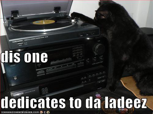 dedication,dj,ladeez,lolcats,Music,record
