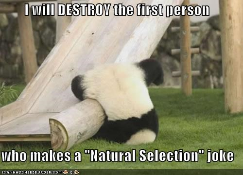 "I will DESTROY the first person   who makes a ""Natural Selection"" joke"