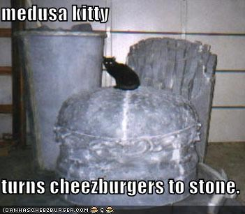 medusa kitty  turns cheezburgers to stone.