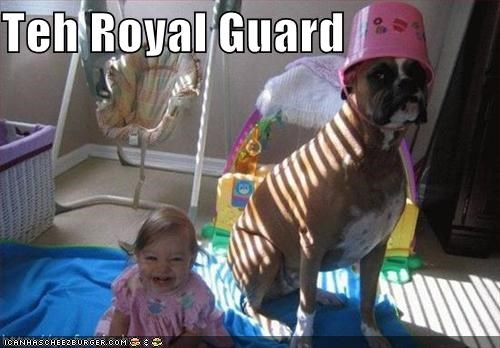 Teh Royal Guard