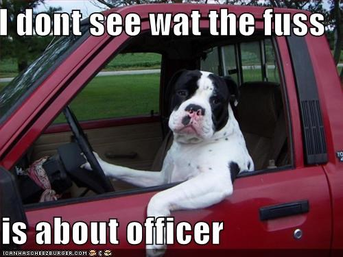 I dont see wat the fuss  is about officer