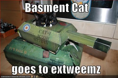 Basment Cat   goes to extweemz