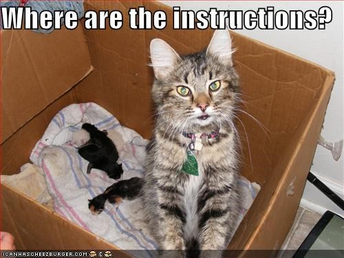 Where are the instructions?
