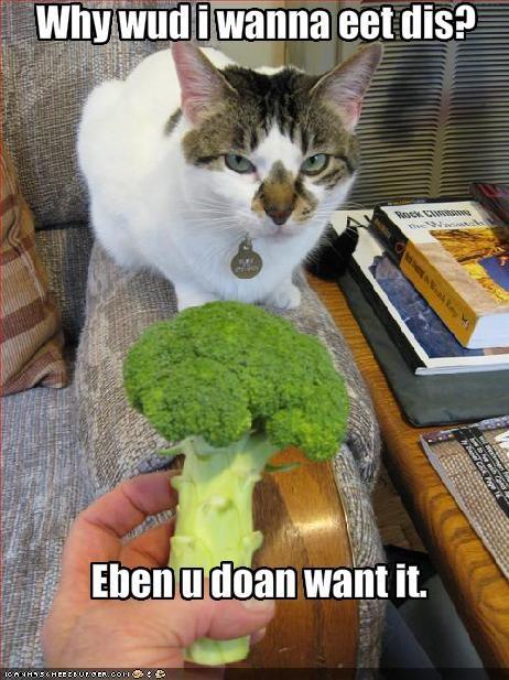 Why wud i wanna eet dis?