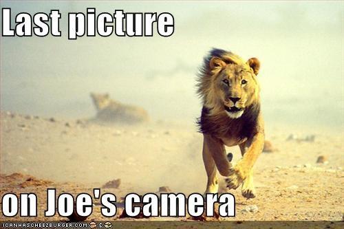 Last picture  on Joe's camera