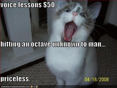lessons,lolcats,noise,octave,priceless,singing