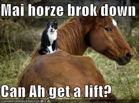 Mai horze brok down  Can Ah get a lift?