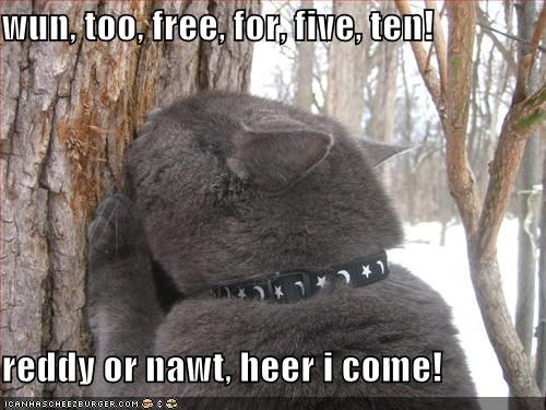 wun, too, free, for, five, ten!  reddy or nawt, heer i come!