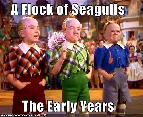 A Flock of Seagulls  The Early Years