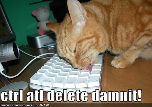ctrl atl delete damnit!