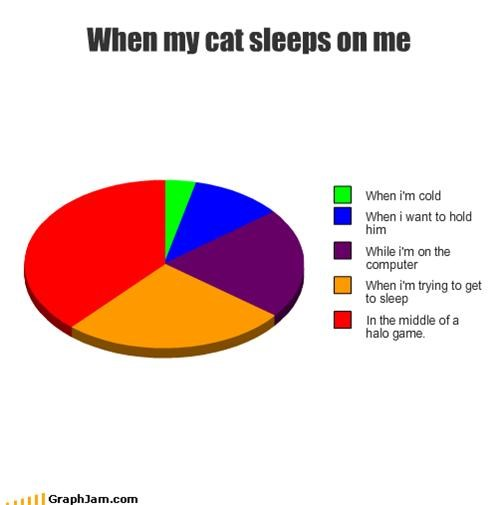 When my cat sleeps on me