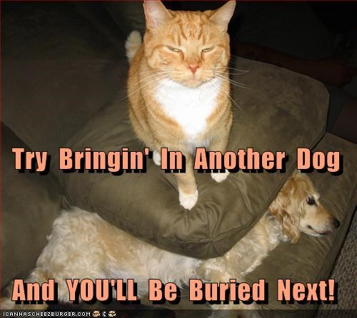 Try  Bringin'  In  Another  Dog   And  YOU'LL  Be  Buried  Next!