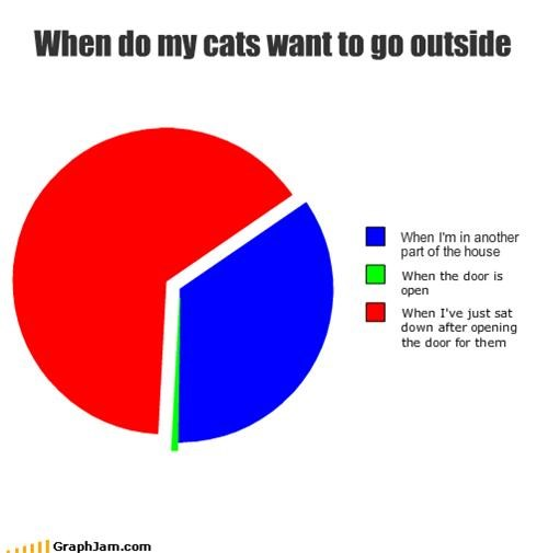 When do my cats want to go outside