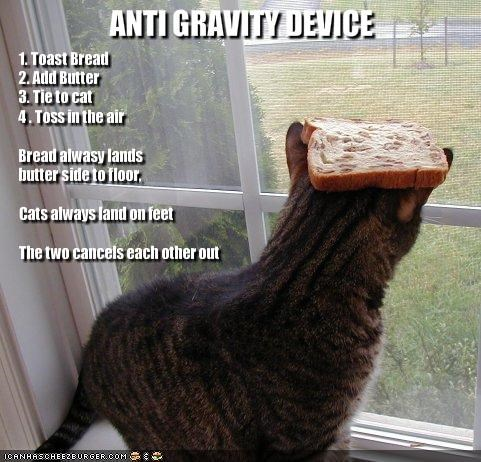 1. Toast Bread