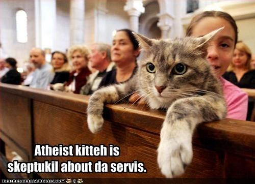 Atheist kitteh is