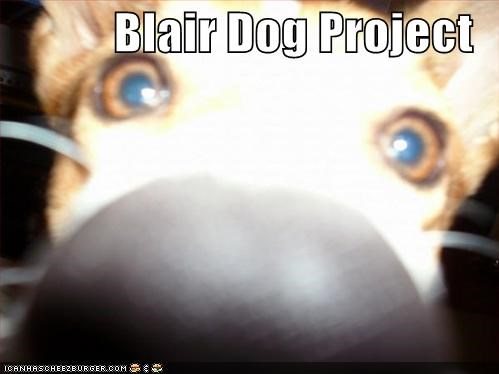 Blair Dog Project