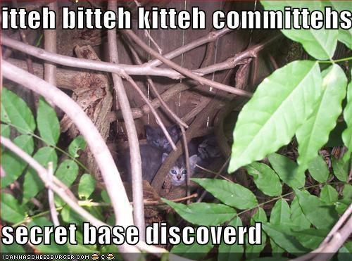 itteh bitteh kitteh committehs  secret base discoverd