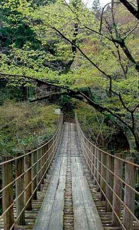 Bridge Circle