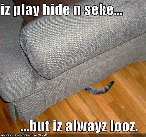 iz play hide n seke...  ...but iz alwayz looz.