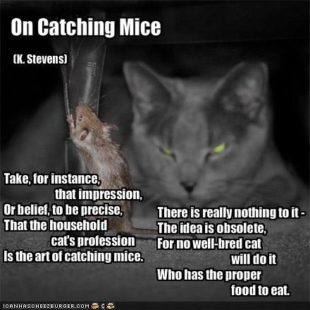 On Catching Mice