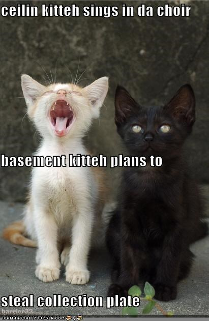 ceilin kitteh sings in da choir basement kitteh plans to steal collection plate