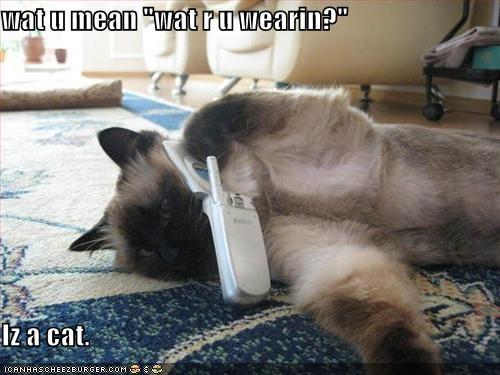 """wat u mean """"wat r u wearin?""""  Iz a cat."""