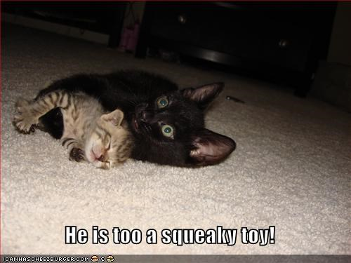 He is too a squeaky toy!