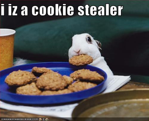 i iz a cookie stealer