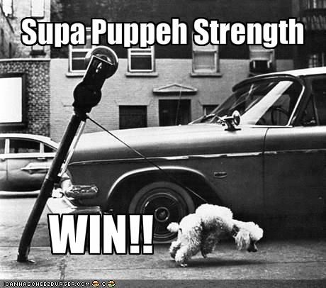 Supa Puppeh Strength