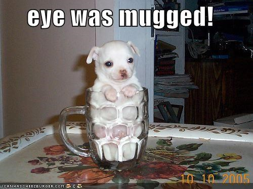 eye was mugged!