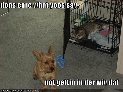 dons care what yoos say,  not gettin in der wiv dat