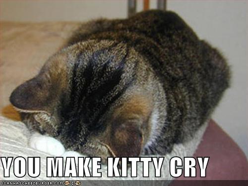 YOU MAKE KITTY CRY