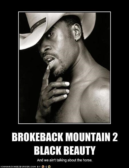BROKEBACK MOUNTAIN 2 BLACK BEAUTY