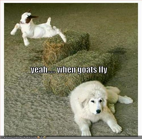 yeah..... when goats fly