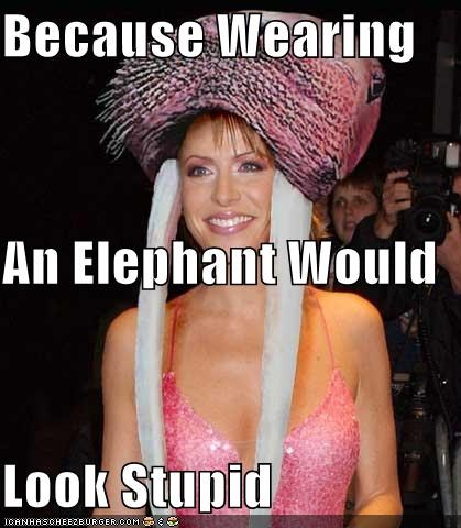 Because Wearing An Elephant Would Look Stupid