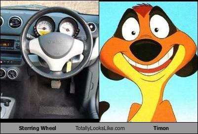 animals,cars,cartoons,meerkat,steering wheel,the lion king,timon