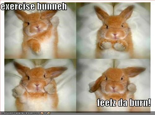 exercise bunneh  feelz da burn!