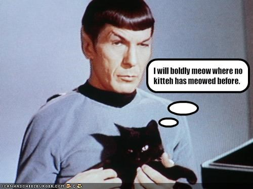 I will boldly meow where no kitteh has meowed before.