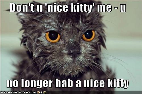 Don't u 'nice kitty' me - u  no longer hab a nice kitty