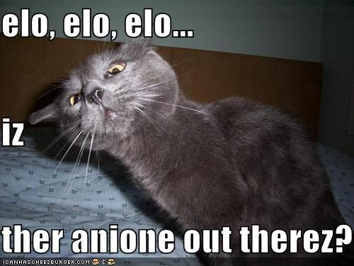 elo, elo, elo... iz ther anione out therez?