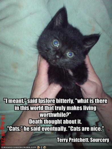 """I meant,"" said Ipslore bitterly, ""what is there in this world that truly makes living worthwhile?""